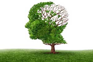 Alzheimer's & prevention
